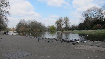 Regent's_Park,_Londres_-_panoramio